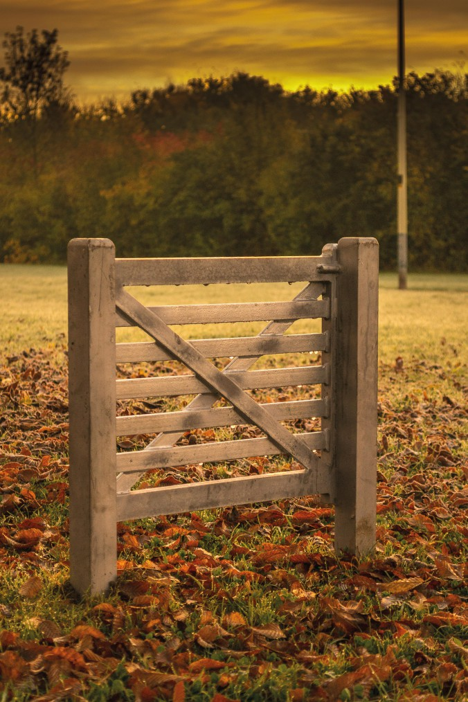 One day... bridle gate.