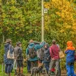 hedges_autumn (10)